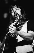 Bob Sega live 1978
