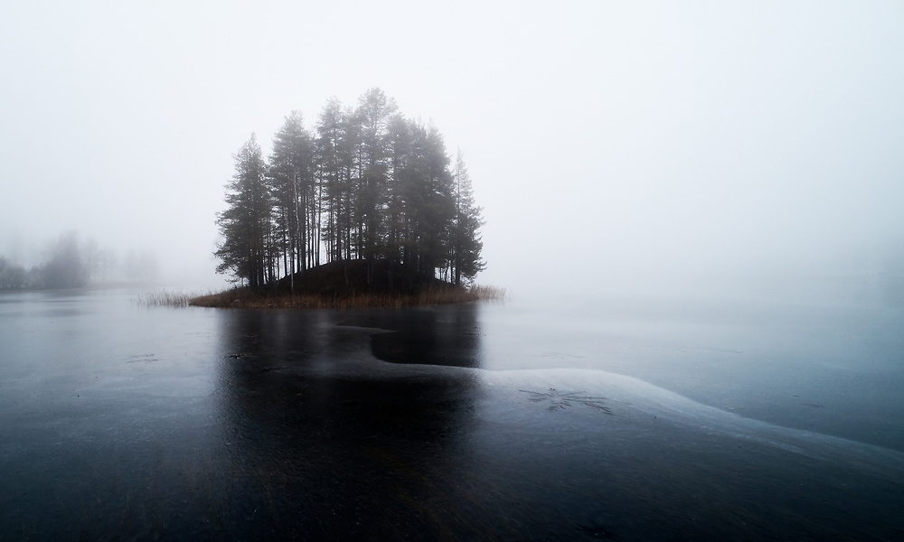Natur, dimma