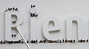 54th Biennale of Venice..ILLUMInazioni - ILLUMInations.Giardini. International Exhibition curated by Bice Curiger..Doves by Maurizio Cattelan.