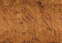 Detail of part of the Sakkara friezes in Egypt.