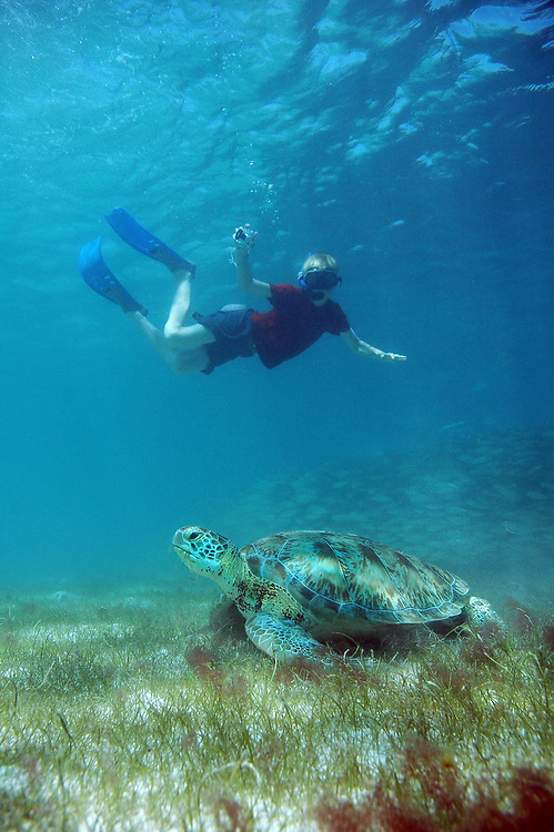 Boy and Green Turtle (Chelonia mydas). Location: Akumal, Mexico