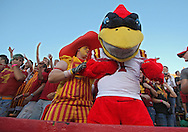 September 2 2010: Iowa State mascot, Cy, during the first half of the NCAA football game between the Northern Illinois Huskies and the Iowa State Cyclones at Jack Trice Stadium in Ames, Iowa on Thursday September 2, 2010. Iowa State defeated Northern Illinois 27-10.