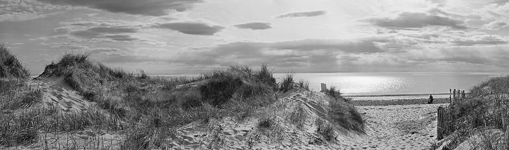 Dunes At Duck Harbor Beach panoramic, Cape Cod, Massachusettes