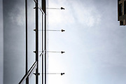 TOKYO UNSEEN - White - Tokyo-Unseen is an essay photo project that suggest the idea of a sensitive and unrealistic Tokyo more than to reveal it.  – FR –  Tokyo Unssen est un essai photographique qui suggere l'idee d'un tokyo sensible et surréaliste plutot que de le révéler.