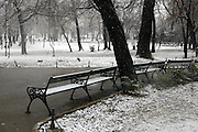 Park Benches During Heavy Snowfall In Winter In Bucharest, Romania