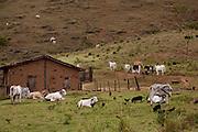 Bandeira_MG, Brasil...Casa em Bandeira, Minas Gerais...House in Bandeira, Minas Gerais...Foto: LEO DRUMOND / NITRO