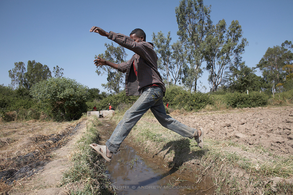 An irrigation canal at Awash Busholla village, Ethiopia. To supply the area water is diverted from the Awash river through a canal. From the canal it is then pumped to a high point after which gravity takes over and the fields in the surrounding area receive water through irrigation channels. The project provides food and income for 66 families, equalling approximately 300 people.