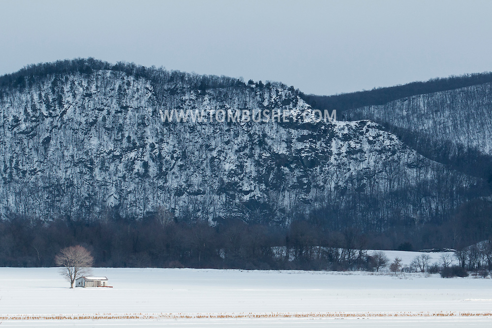 Pine Island, New York - Sunlight shines on snow-covered Black Dirt fields on a winter afternoon on Feb. 12, 2015.