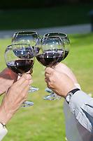 Four people raising toast