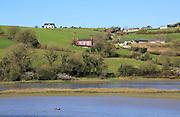 Coastal rural scenery River Arigideen estuary low tide, Burren, Rathclaren, County Cork, Ireland, Irish Republic