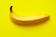 Close up of a ripe banana isolated on yellow background.