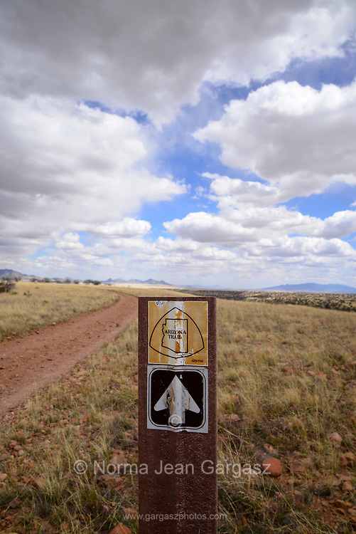 The Arizona Trail between Gardner Canyon Road and Kentucky Camp, Santa Rita Mountains, Arizona, USA.