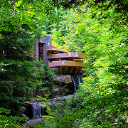 &quot;Shadows of Brilliance&quot;<br />