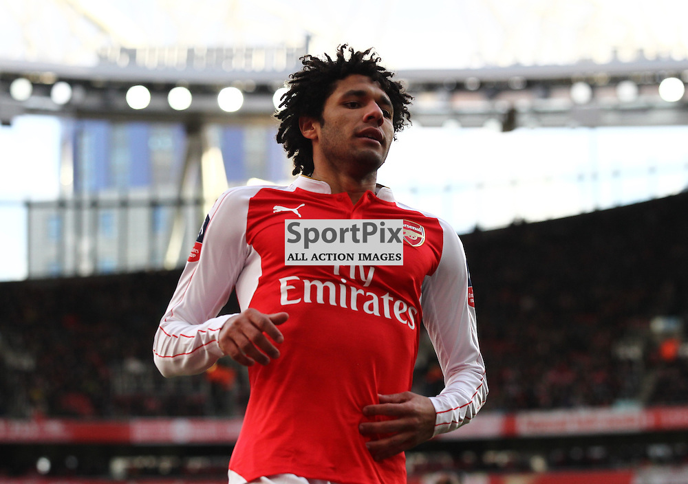 Mohamed Elneny of Arsenal during the Emirates FA Cup Fourth Round game against Burnley Arsenal Vs Burnley, FA Cup Fourth Round, 30.01.2016 (c) Joshua Smith | SportPix.org.uk