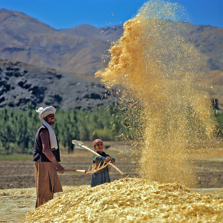 A farmer and his son winnow grain in the Bamian Valley of northern Afghanistan.