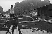 Vietnam, Ha Long Bay