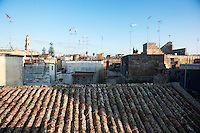 Lecce 20 ottobre 2010..Giardino sul terrazzo di un antica villa fortificata di Lecce