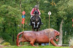 Powala Robert, POL, Tosca Del Castegno<br /> Mondial du Lion - Le Lion d'Angers 2019<br /> © Hippo Foto - Stefan Lafrentz