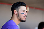 SCOTTSDALE, AZ - FEBRUARY 25:  Nolan Arenado #28 of the Colorado Rockies looks on during the spring training game against the Arizona Diamondbacks at Salt River Fields at Talking Stick on February 25, 2017 in Scottsdale, Arizona.  (Photo by Jennifer Stewart/Getty Images)
