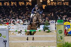 Nuytens Gilles, BEL, Jade S<br /> Jumping Mechelen 2019<br /> © FEI/Dirk Caremans<br />  30/12/2019