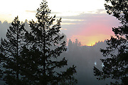 Sunset behind a hillside with trees in the foreground and fog in between. Coeur D Alene, Idaho. PLEASE CONTACT US FOR DIGITAL DOWNLOAD AND PRICING.