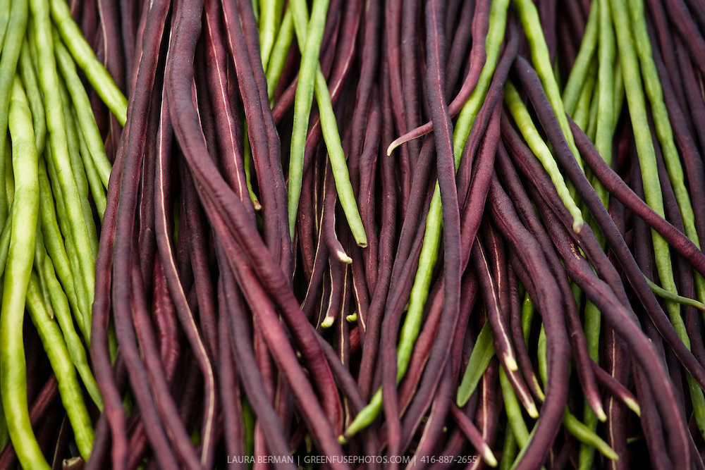 Green and purple yardlong or asparagus beans at a farmers' market.