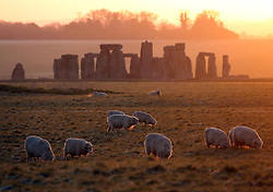 © London News Pictures. 16/04/2014. Stonehenge, UK. Sheep grazing in a field at sunrise in front of Stonehenge in Wiltshire early this morning (Wed). The UK continues to experience a period of warm and sunny weather which is expected to last in to the weekend. Photo credit: Jason Bryant/LNP