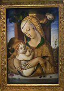 The Virgin and Child about 1480.  Carlo Crivelli (1430/5-94/5.  The artist uses perspective to create spatial depth but the medieval technique of raised gesso (plaster) for the pattern on the Virgin's robe.  Originally from Venice, Crivelli settled in the town of Ascoli Piceno, where his style must have seemed both strikingly new and comfortably familiar.