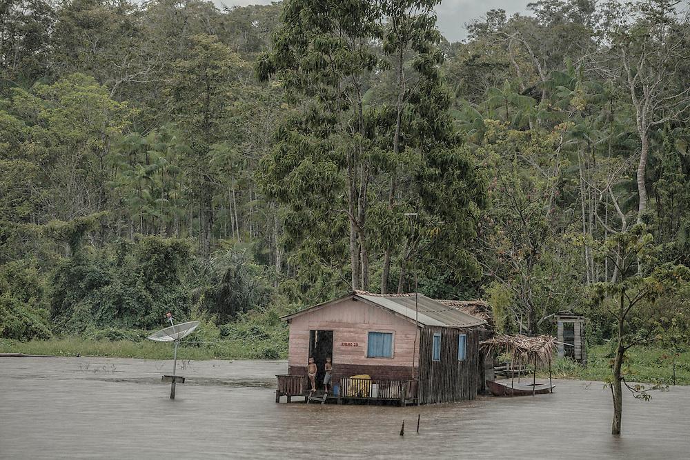 Brazil, Amazonas, rio Amazonas. Saison des pluies.