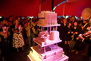 THE CAKE, The Hayward Gallery 40th birthday Gala. hayward Gallery. South Bank. 9 July 2008 *** Local Caption *** -DO NOT ARCHIVE-© Copyright Photograph by Dafydd Jones. 248 Clapham Rd. London SW9 0PZ. Tel 0207 820 0771. www.dafjones.com.