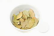 Dried Bay leaves (Laurus nobilis), in a bowl on white background