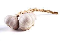 Garlic on white background - studio shot