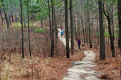 January 19, 2019 - Southern Pines, North Carolina, US - Jan. 19, 2019 - Southern Pines N.C., USA - Runners complete a lap during the 10th Annual Weymouth Woods 100km ultra marathon at the Weymouth Woods Nature Preserve. Runners needed to complete 14 laps of the 4.47 mile course for 62.58 miles in under the 20-hour time allotment. (Credit Image: © Timothy L. Hale/ZUMA Wire)