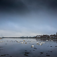 Winter rural scene with birds on the estruary at Bosham in West Sussex, England