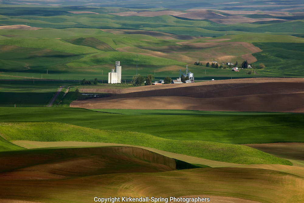 WA05492-00...WASHINGTON - View over the farm covered rolling hills of the Palouse from Steptoe Butte State Park.