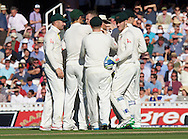 Australia celebrate the taking of a wicket during the 5th Investec Ashes Test Match match at the Kia Oval, London<br /> Picture by Alan Stanford/Focus Images Ltd +44 7915 056117<br /> 21/08/2015