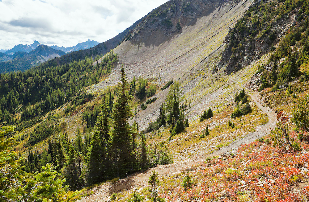 The Pacific Crest Trail just south of harts Pass in the North Cascades of Washington, USA.