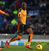 Wolverhampton Wanderers striker Benik Afobe during the Sky Bet Championship match between Brighton and Hove Albion and Wolverhampton Wanderers at the American Express Community Stadium, Brighton and Hove, England on 1 January 2016. Photo by Bennett Dean.