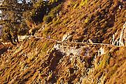 Hikers on trail, Julia Pfeiffer Burns State Park, Big Sur, California