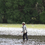 Fly Fishing in the Hawkes Bay region...... NOT WITH Grant Petherick who was unavailable..... .New Zealand,, 12th January 2011 Photo Tim Clayton