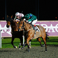 Fire King and J Quinn winning the 8.30 race
