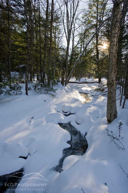 A small tributary of the Baker River in winter in Groton, New Hampshrie.