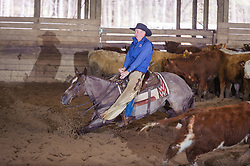 April 29 2017 - Minshall Farm Cutting 1, held at Minshall Farms, Hillsburgh Ontario. The event was put on by the Ontario Cutting Horse Association. Riding in the 25,000 Novice Horse Class is Greg Wilde on Bobby Cee Lena owned by the rider.