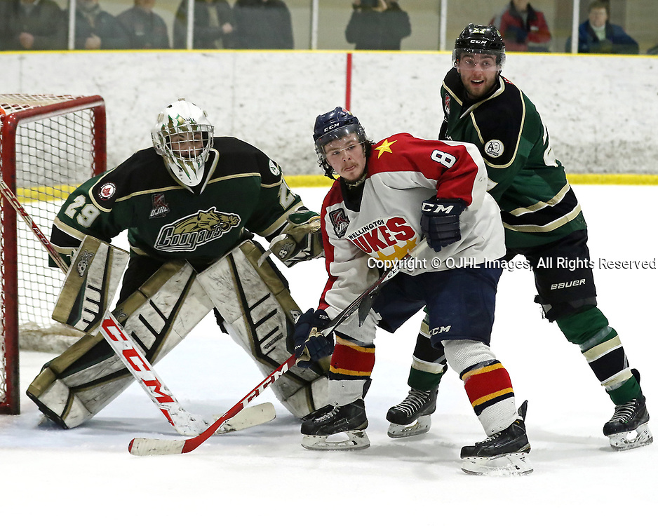 WELLINGTON, ON - MAR 17,  2017: Ontario Junior Hockey League ,playoff game between  the Cobourg Cougars and the Wellington Dukes, Brayden Stortz #8 of the Wellington Dukes battle for position in front of the net during the first overtime period<br /> (Photo by Ed McPherson / OJHL Images)