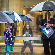 A protestor watches from inside the Charlotte-Mecklenburg government center as others demonstrate in the rain against the proposed amendment making it illegal for businesses operating in the city of Charlotte to discriminate based on sexual orientation and gender identity.