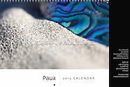 Paua | 2017 Calendar