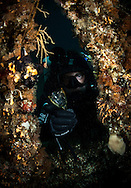 Diver Ian Skipworth finds a crystal glass on the Wreck of the Waikare 1910 at Stop Island, Dusky Sound, Fiordland. Friday 04 April 2014<br /> Photograph Richard Robinson &copy; 2014<br /> Dive Number: 514<br /> Site: The Wreck of the Waikare 1910, Stop Island, Dusky Sound, Fiordland.<br /> Boat: Tutoko<br /> Dive Ian Skipworth<br /> Time: 15:43<br /> Temperature:  14.8<br /> Rebreather: Inspiration Vision. Total Time On Unit: 315:49 hh:mm<br /> Maximum Depth: 18.3 meters<br /> Bottom Time: 122 minutes<br /> Mix: 21<br /> CNS: 40%<br /> OTU: 38%<br /> Bottom Time to Date: 34,682 minutes<br /> Cumulative Time: 34,804 minutes