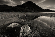 International MONO Awards 2014 - Honourable Mention <br /> <br /> &quot;Landscape Figures&quot; explores the relationship between organic human figures and a notional 'wild landscape'. <br /> <br /> For Glyn the landscape has always been more important than photography itself but for over three years now he has spent much of his time on a project exploring fragility of the human form in wild landscape, but also the sensuous relationship of the human to that environment.<br /> <br /> In his late twenties Glyn discovered for himself the freedom &amp; liberation of being nude in the great outdoors, whilst sunbathing on naturist beaches and this greatly influenced his attitudes to nudity and his approach to this project.<br /> <br /> &ldquo;I found myself fascinated by the link between the stripped-bare naked form and the naturalness of the wind-formed sand &ndash; everything seemed &lsquo;right&rsquo;, understandable and connected. I started to place myself in many other landscapes whilst out and about shooting images for my gallery, and I realised that the simple exploration of nude figures within landscape was becoming a self-portrait project, but there was a growing intrigue to see if others would relate to my ideas&rdquo;.<br /> <br /> Glyn started to work with amateur volunteer models who were friends and members of the general public. The more images he produced, the easier it was to find new volunteers, inspired as they were by what they could see as a growing and intriguing project, and a project in which they would leave their own comfort zones.<br /> <br /> In most cases Glyn has hidden the models faces, as he did not want the images to become &lsquo;portraits&rsquo; of actual people, but simply studies of figures in situ responding to location and the weather.<br /> <br /> &ldquo;Although the nude is vital to the project and integral within the images, the images are not just &lsquo;nudes&rsquo; &ndash; they are landscapes and stories. In a way they are just