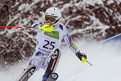 Puig Davi Roger of Andora during Slalom race at 2019 World Para Alpine Skiing Championship, on January 23, 2019 in Kranjska Gora, Slovenia. Photo by Matic Ritonja / Sportida