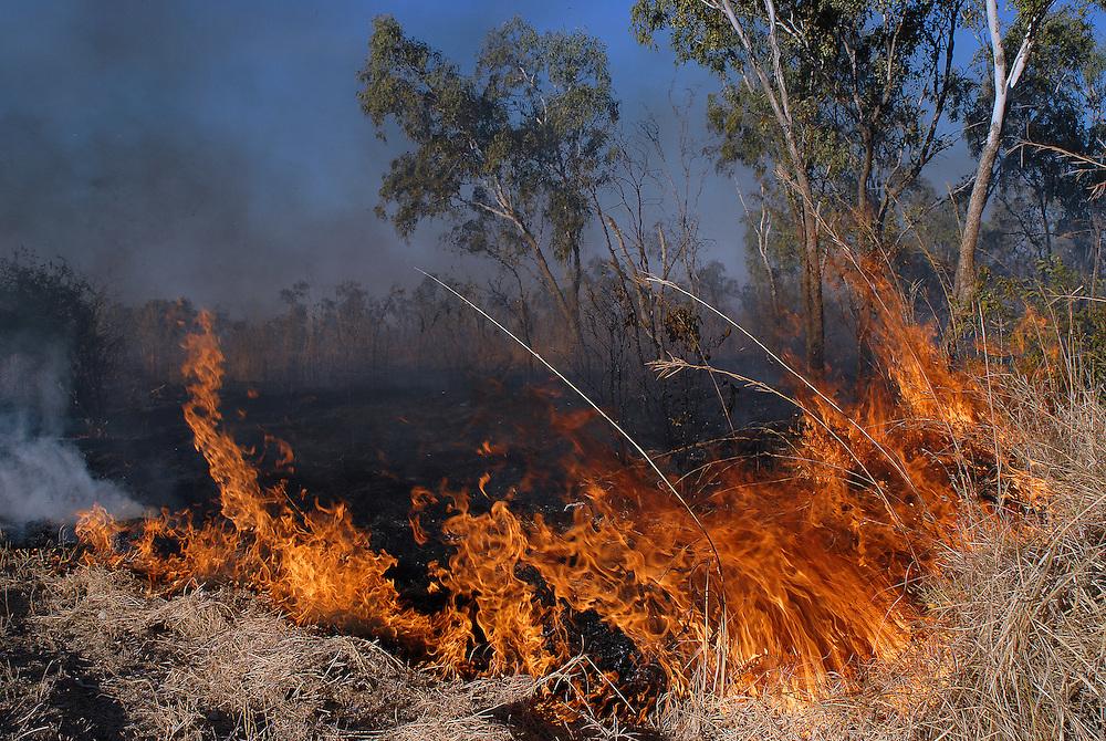 Controlled burning near Fitzroy Crossing, The Kimberley, Western Australia 28 June 2006